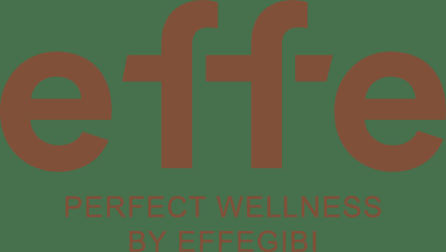Логотип - Запчасти Effegibi